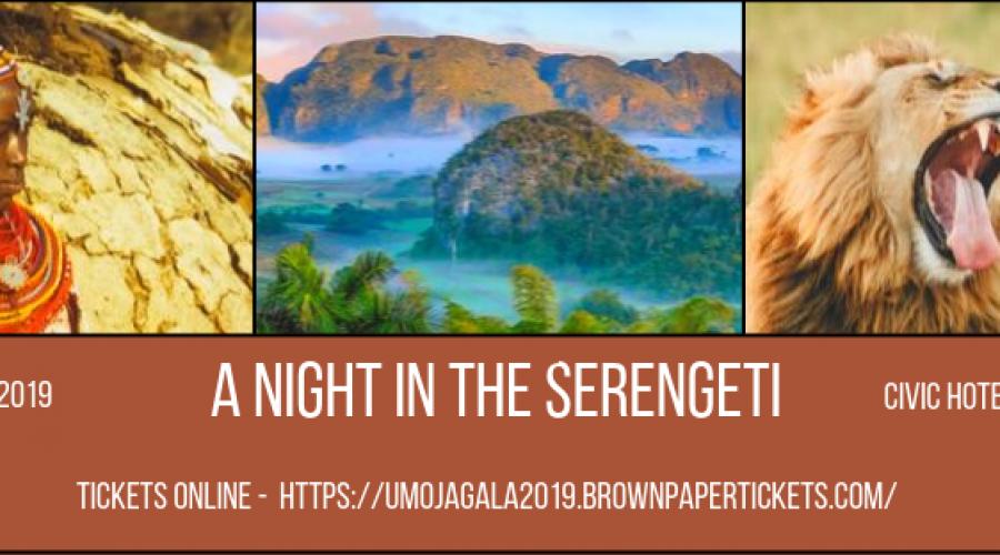 2019 Umoja Gala -A Night in the Serengeti